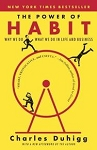 The Power of Habit (Why We Do What We Do in Life and Business) - Charles Duhigg